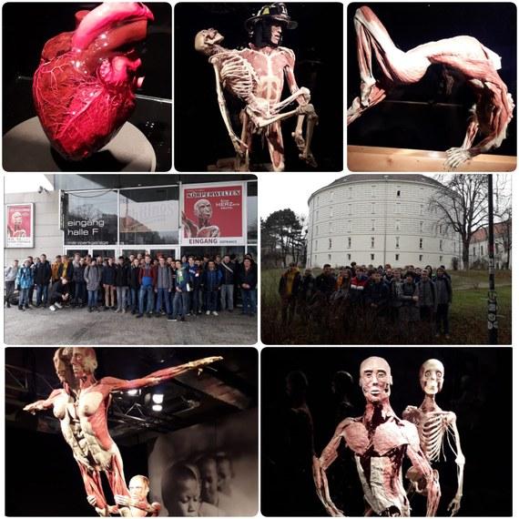 """HTL Schüler besuchen die Ausstellung """"Körperwelten"""""""