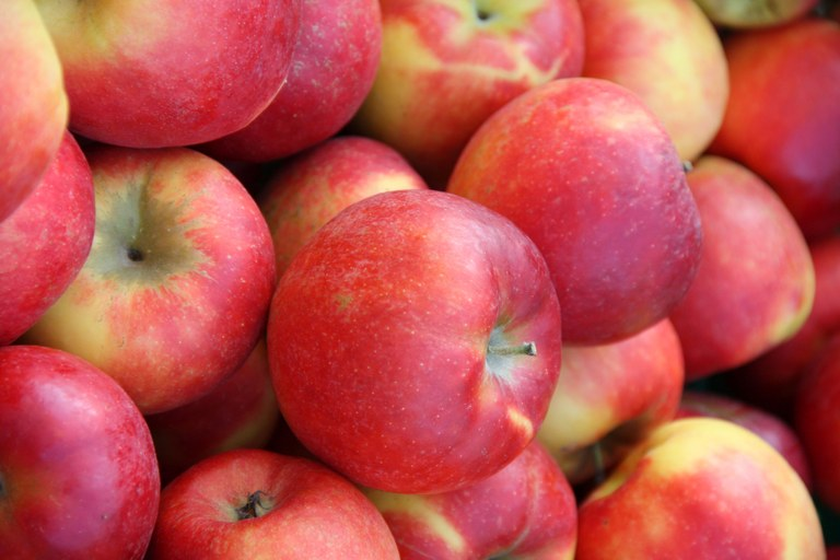 Bioäpfel mit Technologie aus der HTL